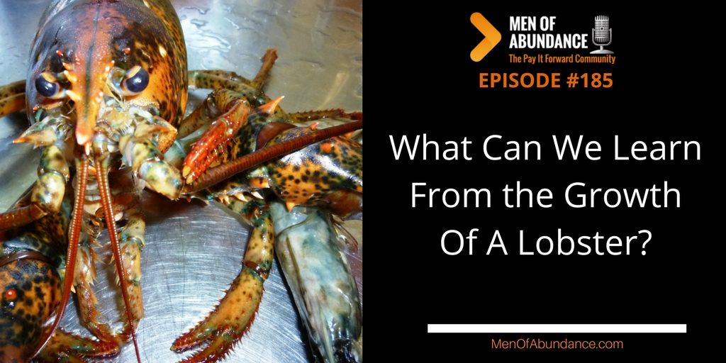 MOA 185- PIFAF - What Can We Learn From the Growth Of A Lobster?